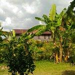 Photo of La Plantation
