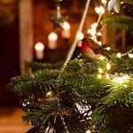 A Christmas wonderland...