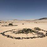 Bilde fra Welwitschia Plains