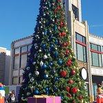 Downtown Disney의 사진