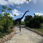 Foto de Bavaro Adventure Park