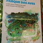 Comparação de como era o Parque das Aves com o que ele é hoje: muito mais amplo, com maior diversidade de aves.