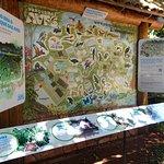 Foto mais ampla do mapa do Parque das Aves com a explicação das mudanças ocorridas ao longo dos anos visando tornar o local um lugar de visitação e estudos.