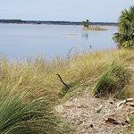 Foto de St. Marks National Wildlife Refuge