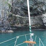 صورة فوتوغرافية لـ Akaroa Sailing Cruises