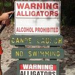 صورة فوتوغرافية لـ Gator's Dockside