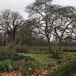 Kensington fényképe