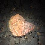 Foto de Volcanorun