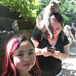 """""""Ubud Monkey Forest"""" feeding the monkey."""