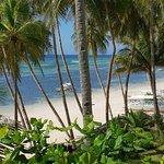 Foto de Anda White Beach Resort