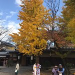 Foto de Yasaka Shrine