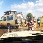 Safari Infinity - Day Tours照片