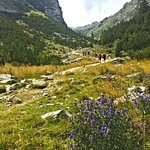 Lots of green and tones of oxygen. 5days in Julian Alps give you additional 3 years longer life, that's for sure.