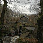 ภาพถ่ายของ Bracklinn Falls Bridge and Callander Crags
