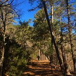 Foto de Hot Springs National Park