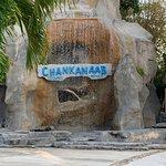 Bild från Chankanaab Beach Adventure Park