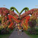 Photo of Dubai Miracle Garden