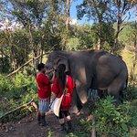 Photo de Blue Elephant Thailand Tours