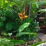 Putu Bali Villa and Spa Photo