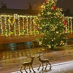 The best Christmas Tree and Christmas decoration in Harrogate can only be found on our front dec