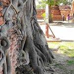 Foto de Wat Mahathat