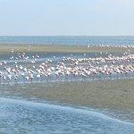 Walvis Bay Waterfrontの写真