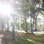 Parque em frente a UFPR
