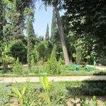 Jardin Jnan Sbil Foto