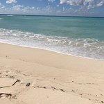Foto di Pillory Beach