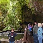 Photo of Natour - Day Tours