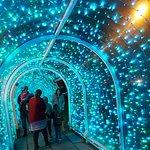 Fotografija – Bude Tunnel