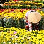 Vietnamses Tet holiday    Hieutour's day - www.hieutour.com +84939666156 contact@hieutour.