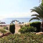 Berenice Beach Club照片