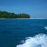 バンブー アイランドの写真