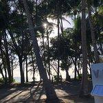 Vivo Palm Coveの写真