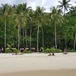 Photo of Freedom Beach
