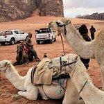 טיול לירדן עם חברת טיולים ואתגרים  החברה מספר אחת לטיולים   להזמנת טיול  03-656-44-88