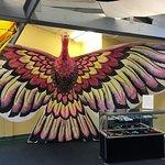 Billede af World Kite Museum & Hall of Fame