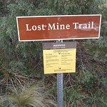 Billede af Lost Mine Trail