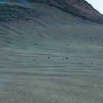 Timanfaya Nationalpark Foto