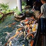 Photo of Aquarium de Paris - CineAqua