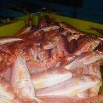 Salmonetitos frescos del puerto de Motril.