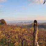 Photo of Trattoria alla Cima
