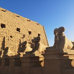 Photo de Luxor For You - Private Day Tours