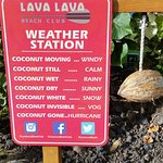 Coconut weather forecast
