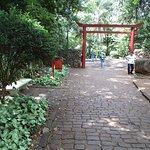 Bosque Jardim Japonês - Entrada
