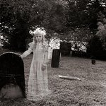 Dahlonega Walking Tours Historic Ghost Walk