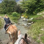 Photo of Backcountry Saddle Expeditions