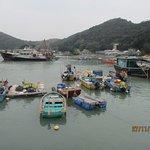 plenty of boats b the pier
