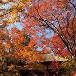 Bild från Jojakkoji Temple